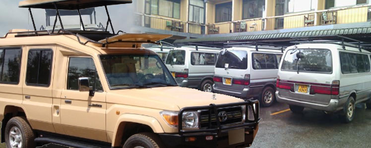 4x4 Safari Car Hire - 4x4 Safari Land Cruisers, Safari Vans
