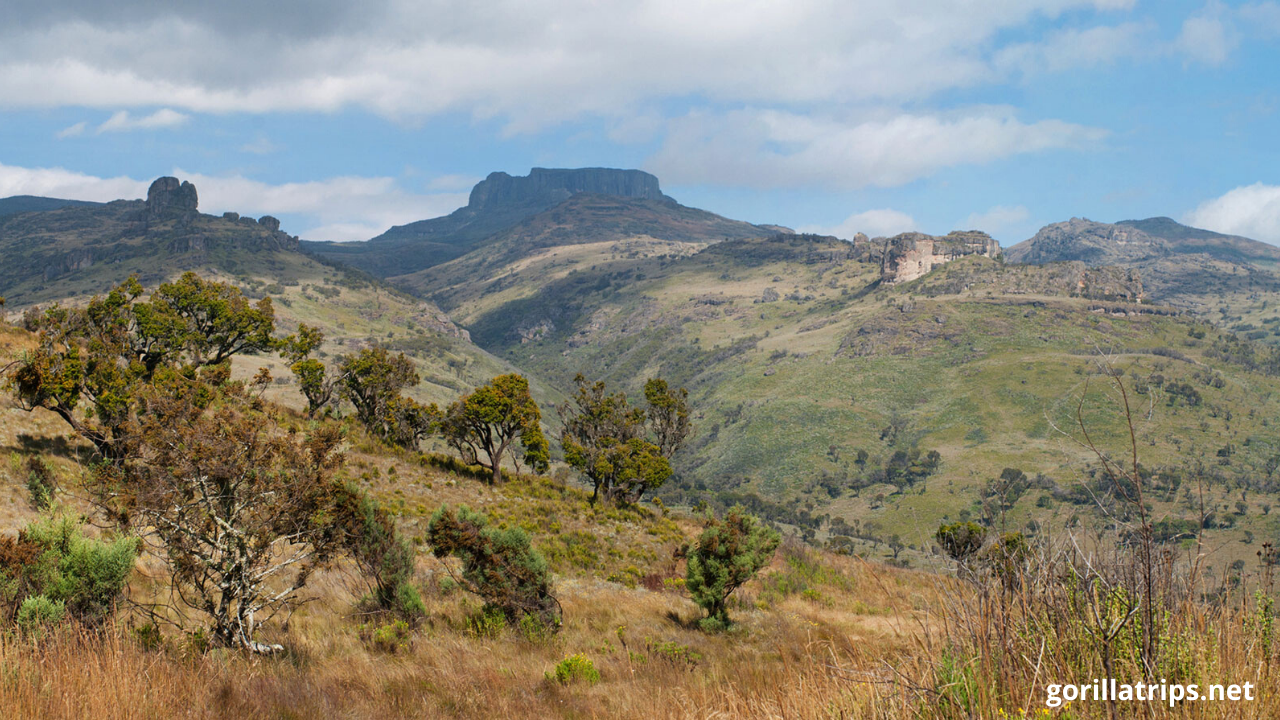 Mount Elgon in Uganda