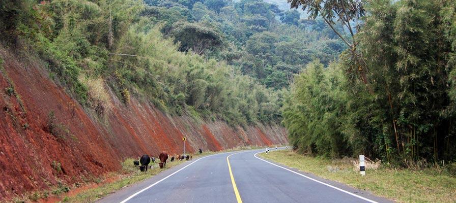 Uganda Gorillas & Wildlife Safari journey