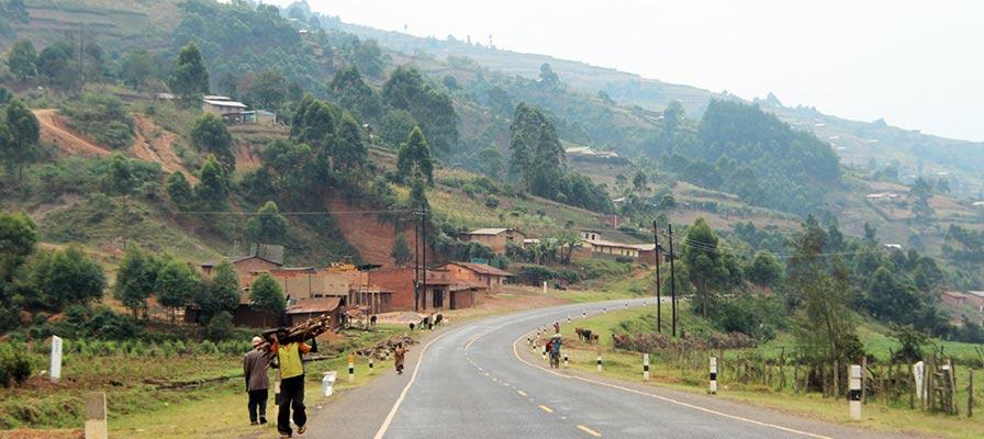 Travel to Bwindi Impenetrable National Park