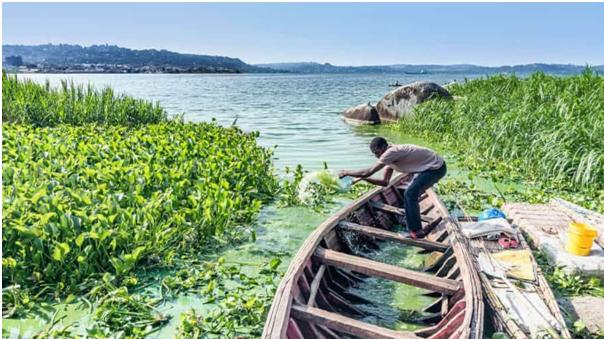 Ssese island sportfishing