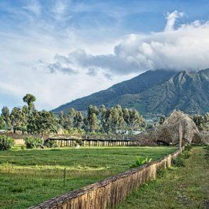 best-time-to-visit-rwanda-fig-1