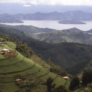 rwanda-travel-tips-fig-2