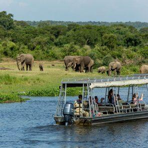 murchison-falls-boat-safari